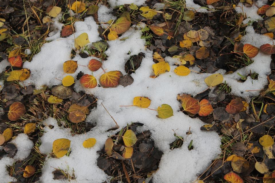 Aspen Colorado winter vacation